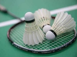 Photo of Badminton